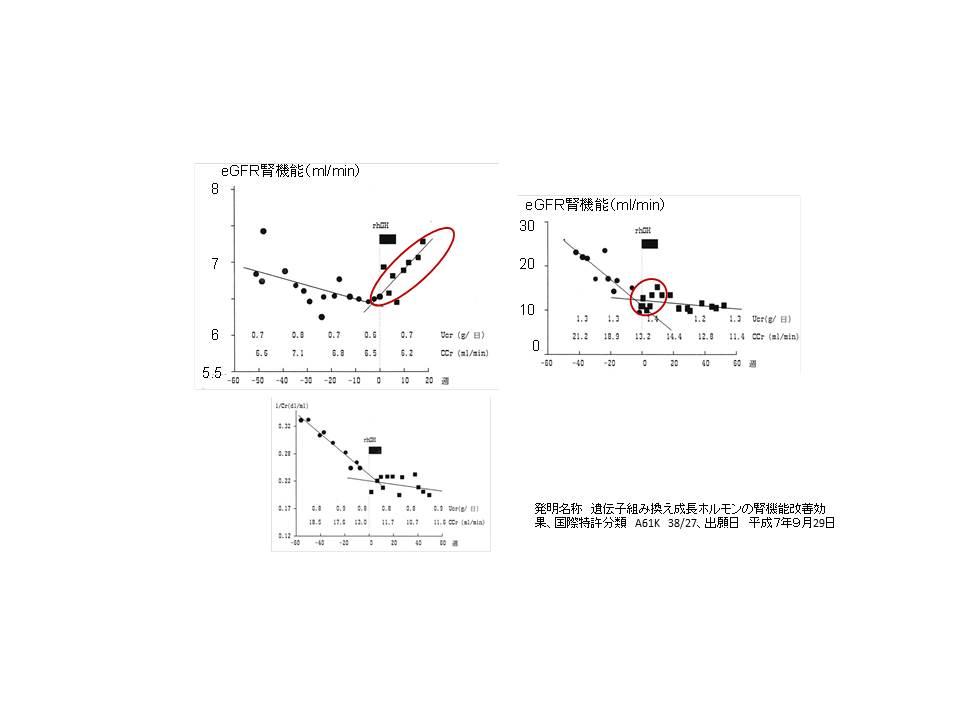 成長ホルモンの驚異的な効果; 腎機能改善効果