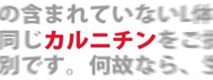コディネ 2013秋季号